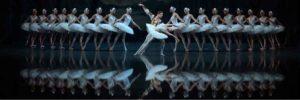 Выступления звезд балета