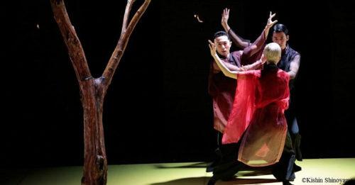 Балет «Сад очертаний», Балетная компания «Ноизм»