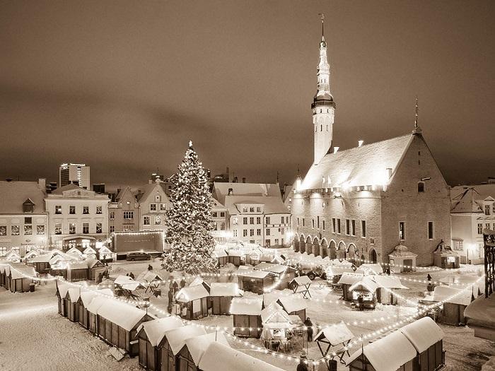 Авторский тур в Таллин